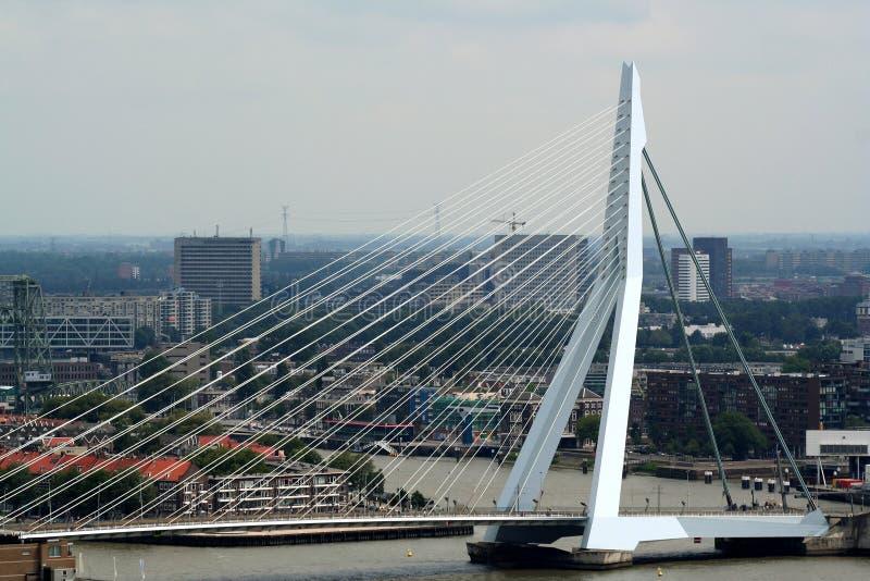 pássaro-vista sobre a ponte do Erasmus imagens de stock