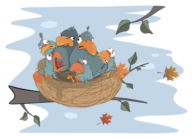 Pássaros com seus quatro bebês nos desenhos animados do ninho ilustração stock
