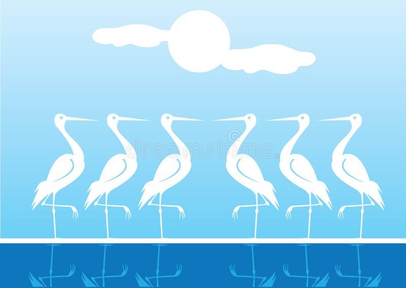 Pássaros de água branca que estão um pé ilustração stock