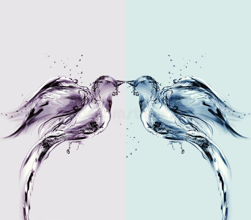 Pássaros de água coloridos do amor ilustração do vetor