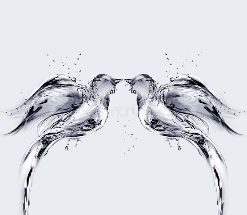 Pássaros de água do amor fotografia de stock