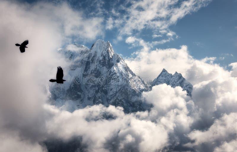 Pássaros de voo contra a montanha majestosa de Manaslu com pico nevado fotos de stock royalty free