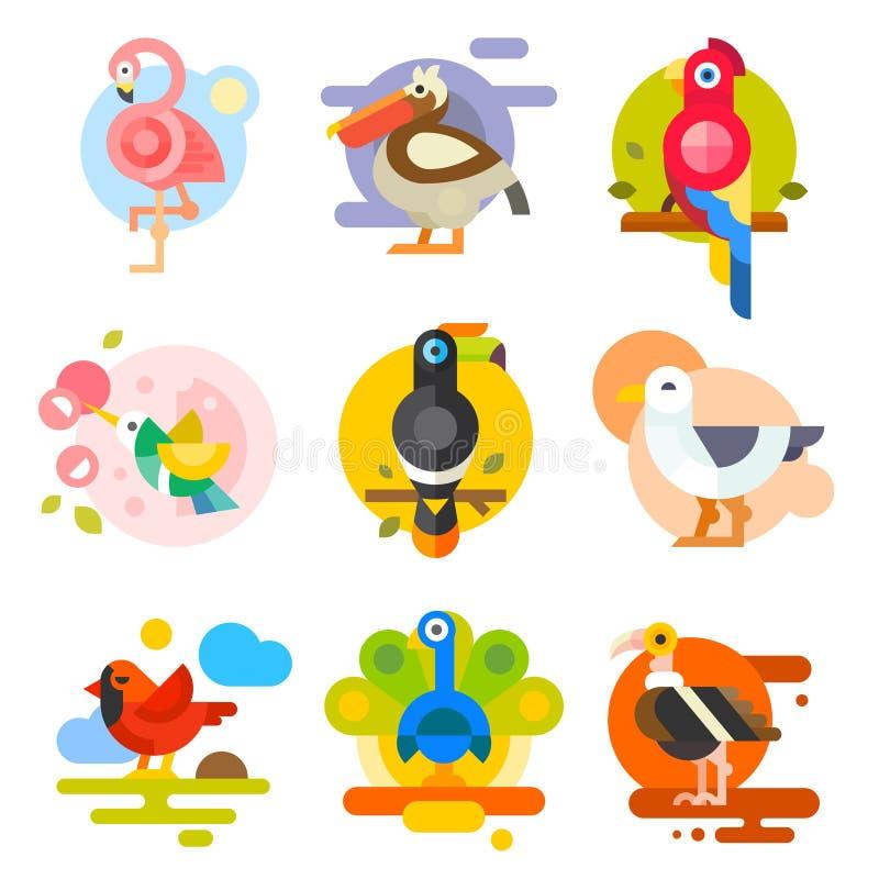 Pássaros diferentes ilustração do vetor