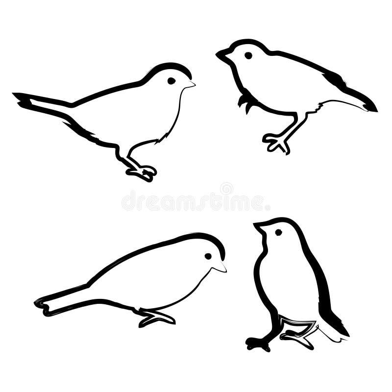 Super Pássaros Do Desenho, Esboço Do Vetor Ilustração do Vetor  HJ28