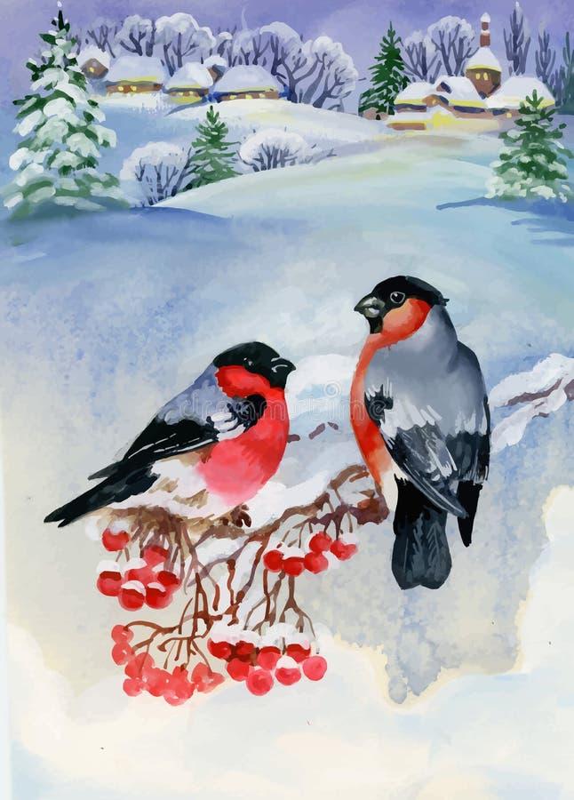 Pássaros do dom-fafe no ramo de árvore nevado Ilustração da aguarela ilustração royalty free