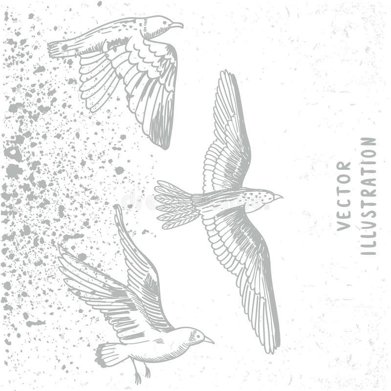 Pássaros do Grunge brancos ilustração royalty free