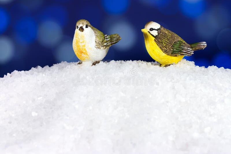 Pássaros do inverno do Natal fotos de stock royalty free