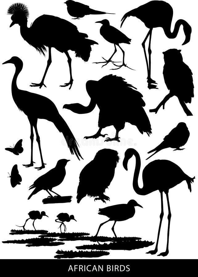 Pássaros e aves de rapina africanos ilustração royalty free