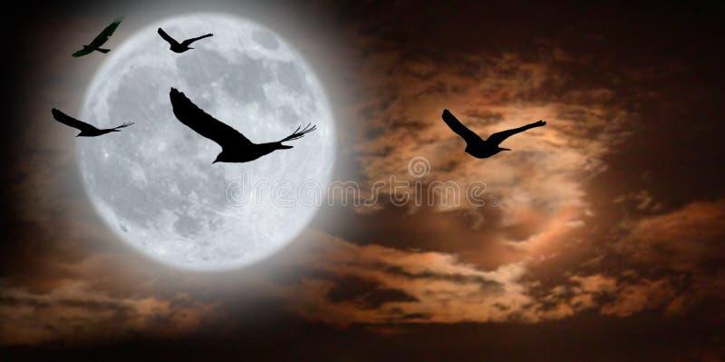 Pássaros e moonscape surreal imagem de stock royalty free