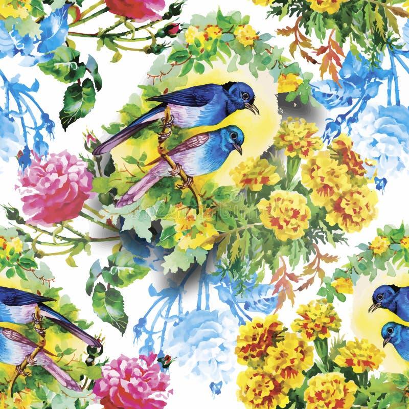 Pássaros exóticos selvagens da aquarela no teste padrão sem emenda das flores no fundo branco ilustração stock