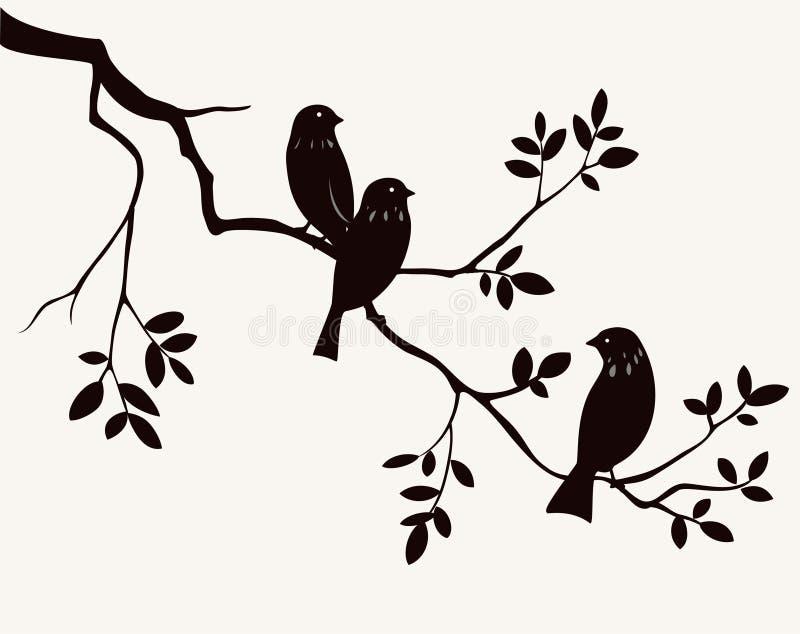 Pássaros no galho