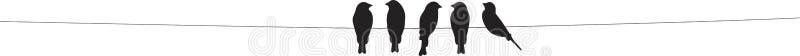 Pássaros no vetor do fio, silhuetas dos pássaros isoladas no fundo branco Decoração da parede, decalques da parede, Art Decor, pr ilustração stock