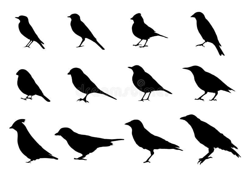 Pássaros que sentam silhuetas da vista lateral ilustração do vetor