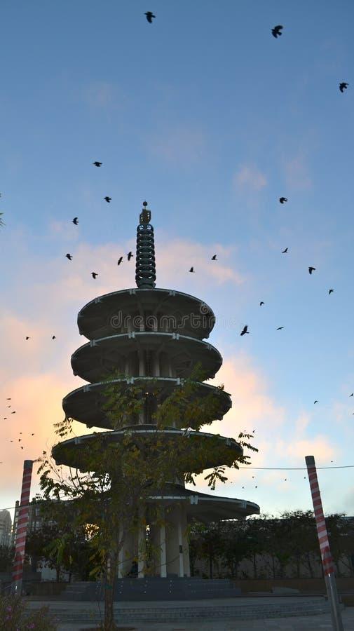 Pássaros sobre o pagode da paz imagem de stock royalty free