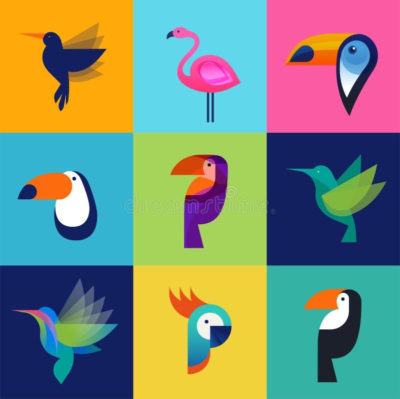 Pássaros tropicais - grupo de ícones do vetor ilustração do vetor