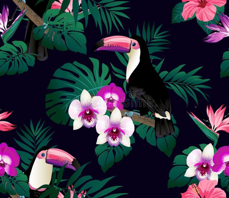 Pássaros tropicais, orquídeas e fundo sem emenda das folhas de palmeira ilustração stock