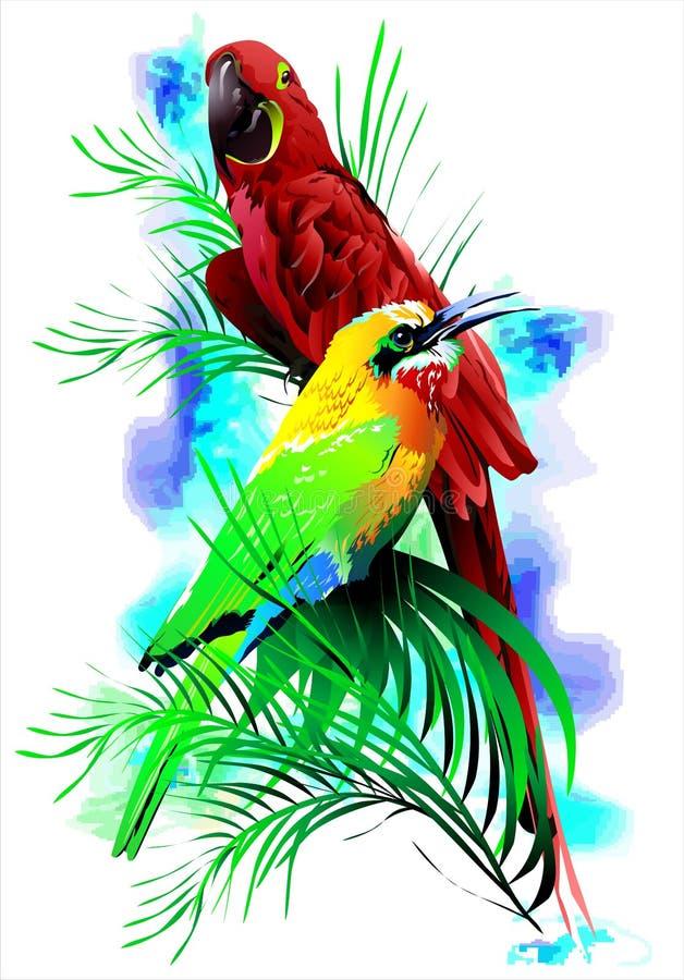 Pássaros tropicais (Vetor) ilustração royalty free