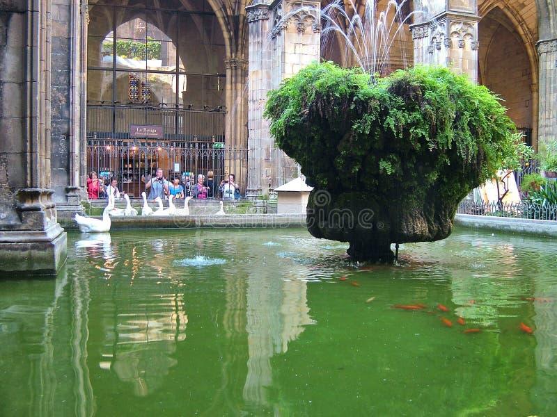 Pátio da catedral em Barcelona, Espanha fotografia de stock