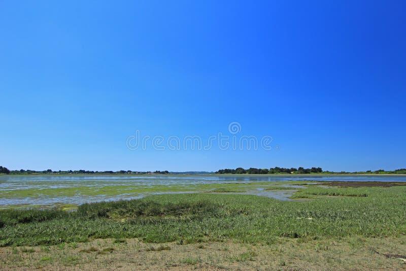 Pântano de sal no golfo de Morbihan, França imagens de stock royalty free