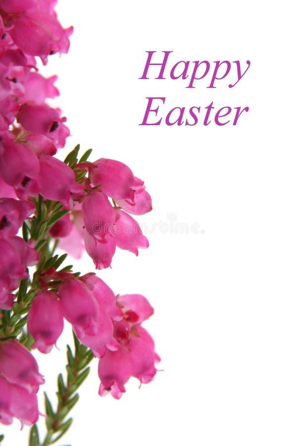 Pâques Heureuse Photo libre de droits