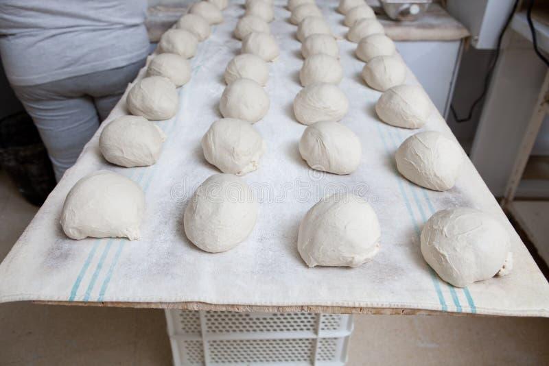Pâte de pain avant la fermentation images libres de droits