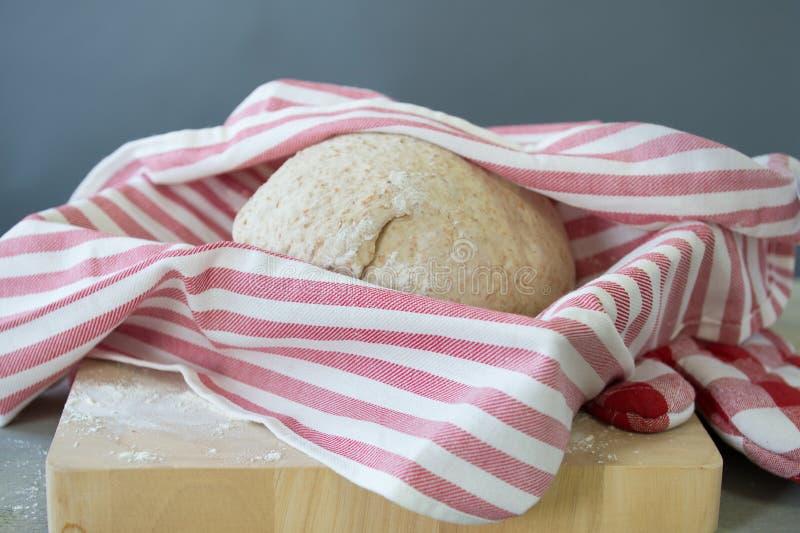 Pâte de pain en hausse photographie stock libre de droits
