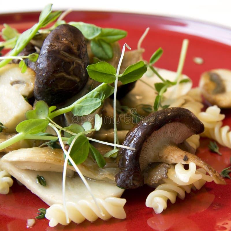 Pâtes avec des champignons de couche photos libres de droits