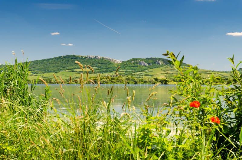 PÃ ¡ lavaheuvels, Moravië, Tsjechische Republiek, Midden-Europa stock foto