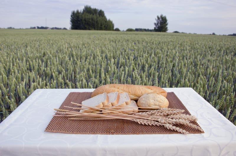 Pão branco no campo da tabela e de trigo do verão foto de stock