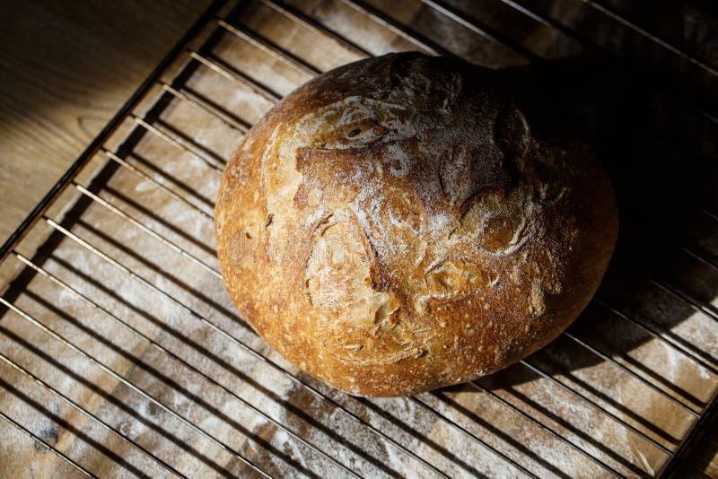 Pão caseiro fresco feito do sourdough que descansa em uma cremalheira de fio Pão do artesão com a crosta friável dourada foto de stock