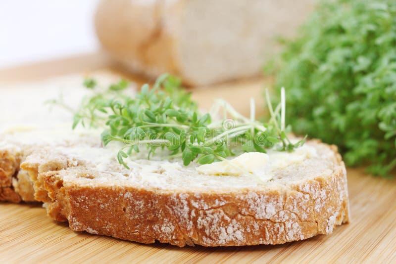 Pão com manteiga e agrião imagem de stock royalty free