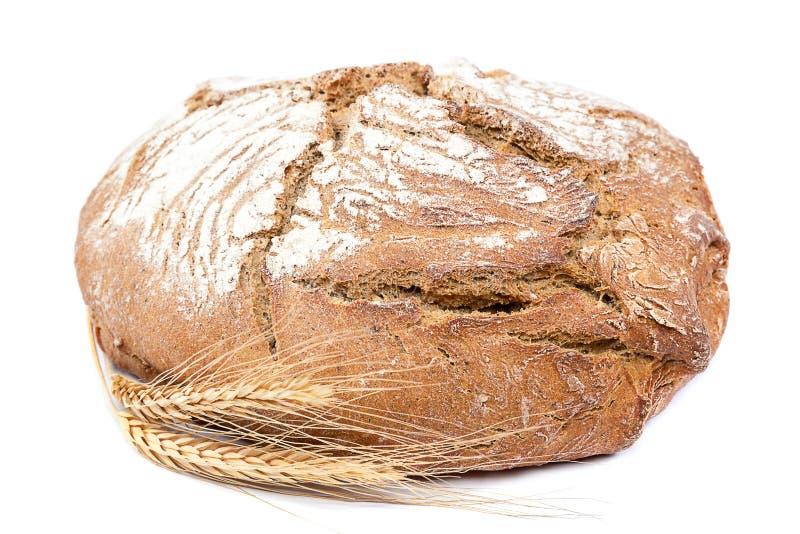 Pão de centeio fresco com orelhas do trigo foto de stock royalty free