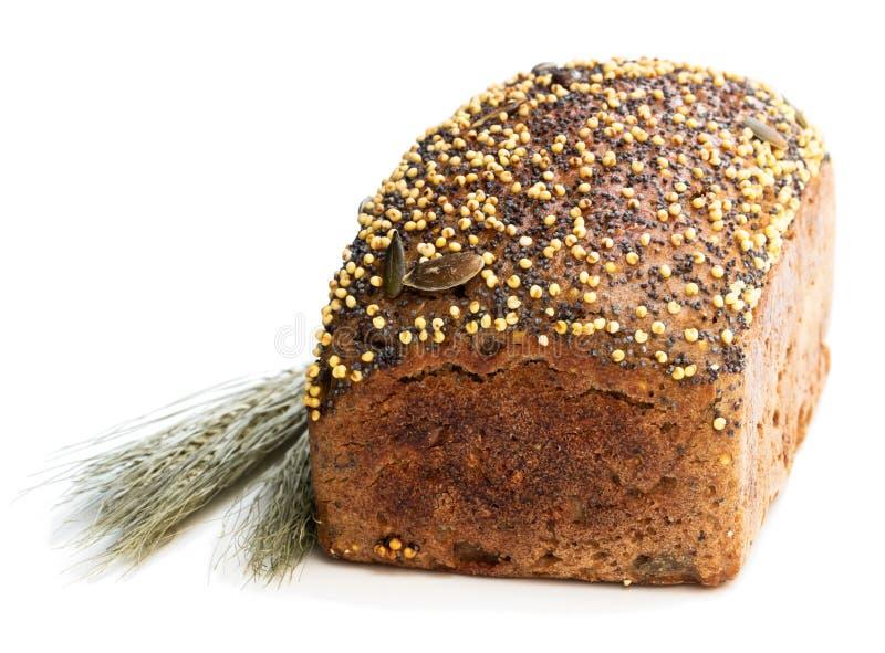 Pão de centeio wholemeal caseiro com a aveia em flocos da semente e do painço do chia isolada no branco foto de stock royalty free