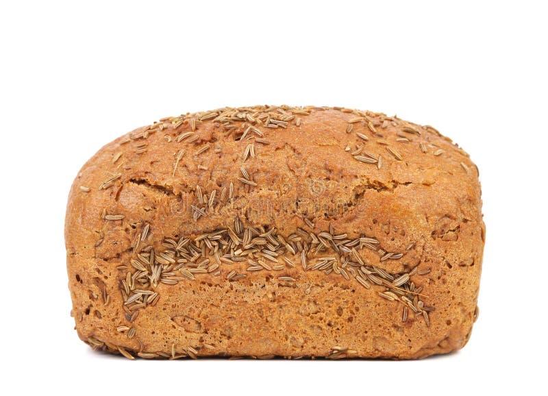 Pão de Rye com semente de alcaravia fotografia de stock