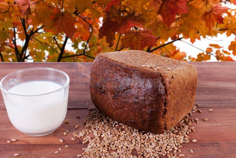 Pão e grões trigo e caneca do leite fotografia de stock