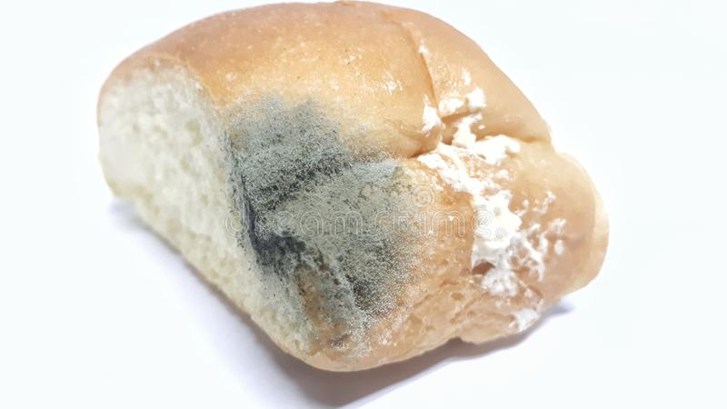Pão expirado com fungo foto de stock