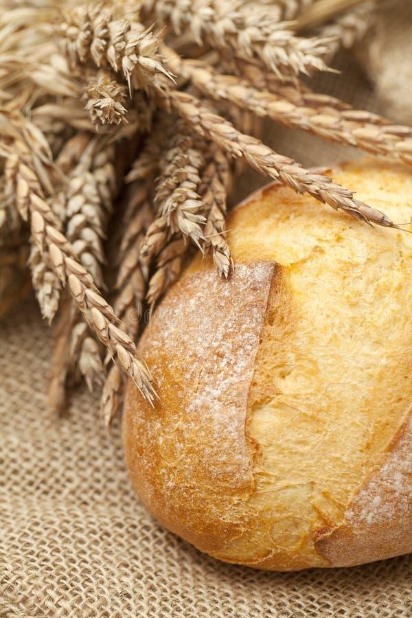 Pão fresco do trigo na serapilheira imagem de stock