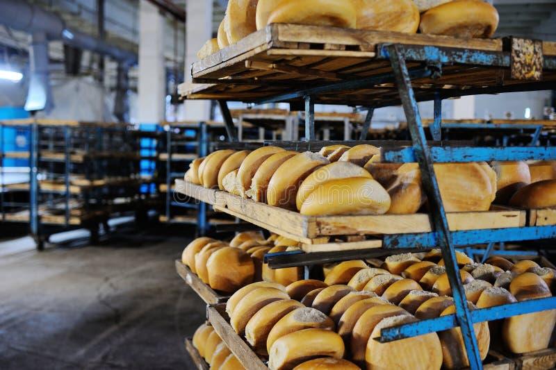 Pão fresco em uma prateleira em uma padaria fotografia de stock royalty free