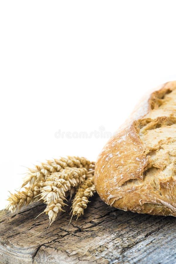 Pão integral em uma placa do cuttig foto de stock
