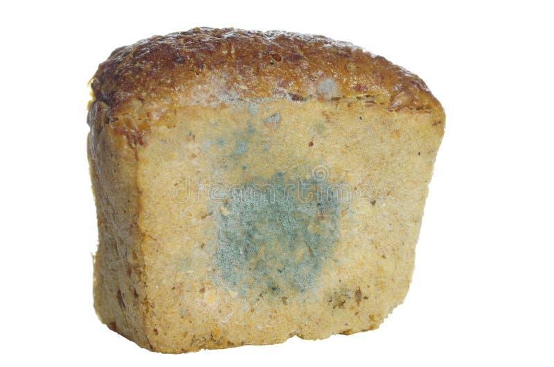 Pão Mouldy imagens de stock