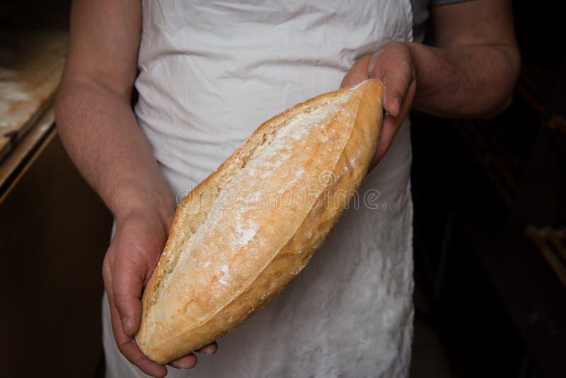 Pão rústico foto de stock royalty free