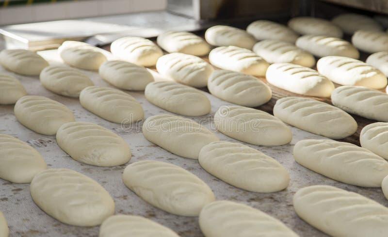 Pão suportado fresco foto de stock