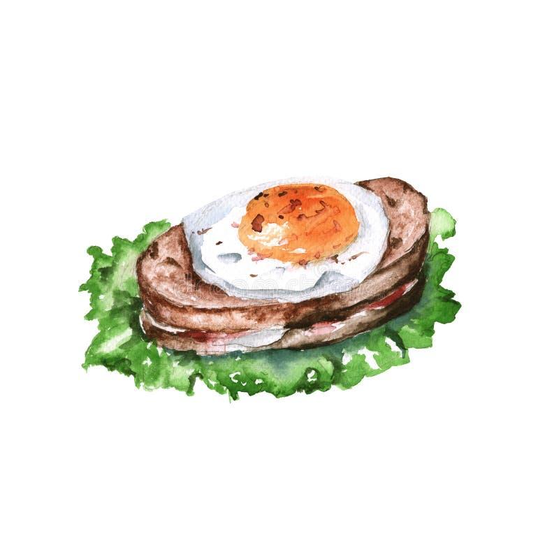Pão torrado quente com ovo e salada Isolado no fundo branco ilustração do vetor
