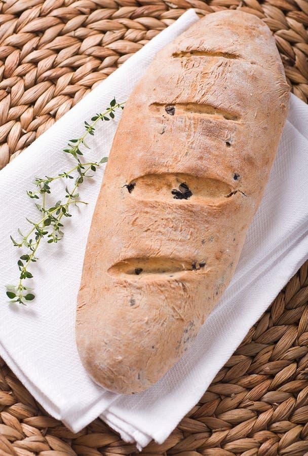 Pão verde-oliva imagem de stock royalty free