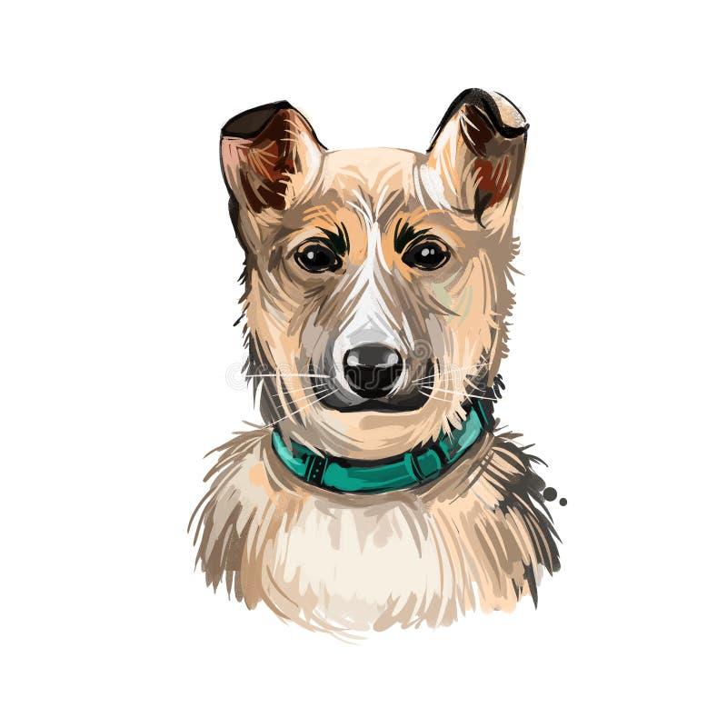 Pãozinho lundehund norueguês purebred, arte digital de estimação escandinava ilustração stock