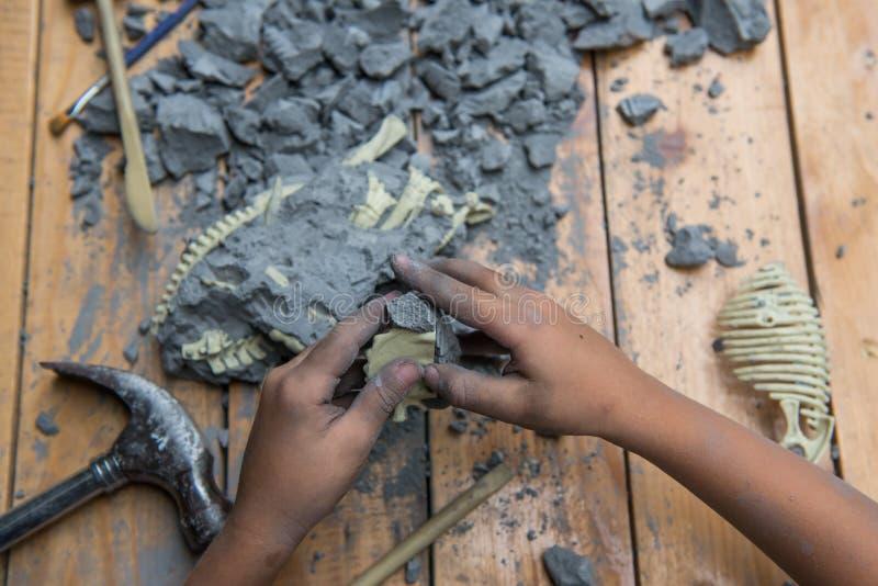 Pädagogisches Archäologiespielzeug stockbild