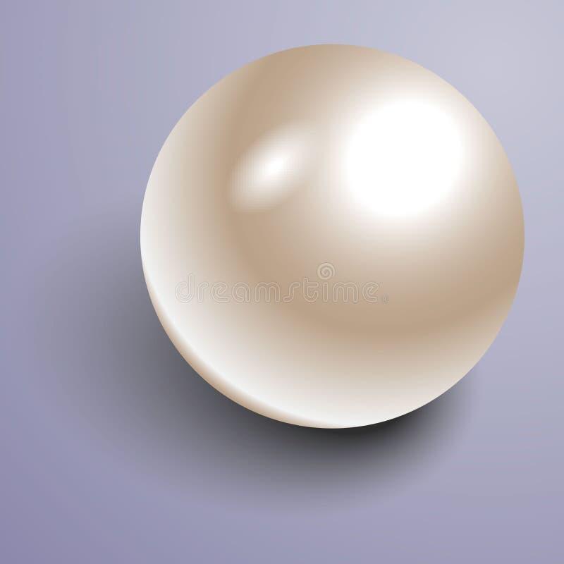Pärla för vit 3D för vektor härlig skinande naturlig vektor illustrationer