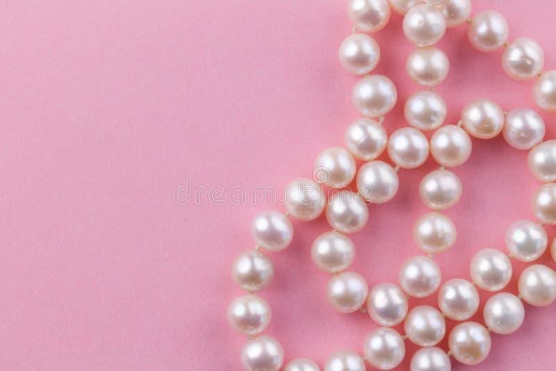 P?rlabakgrund med den nacreous p?rlahalsbandet p? rosa bakgrund - slut upp makrofotoet royaltyfri bild