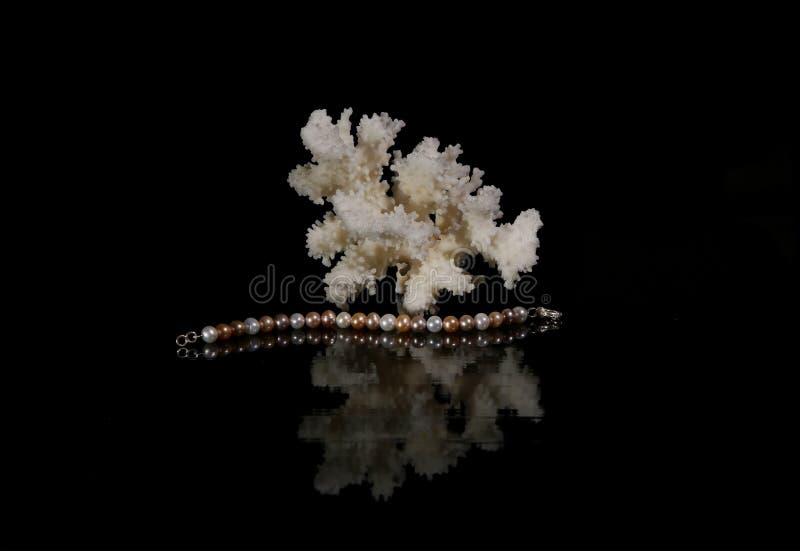 Pärlemorfärg armband med korall royaltyfri bild