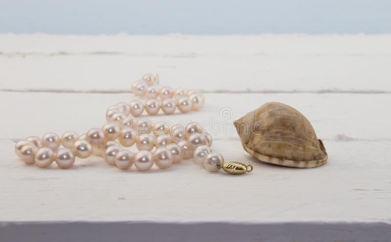 Pärlemorfärg halsband för rosa färger på vit wood bakgrund med skalet arkivfoton